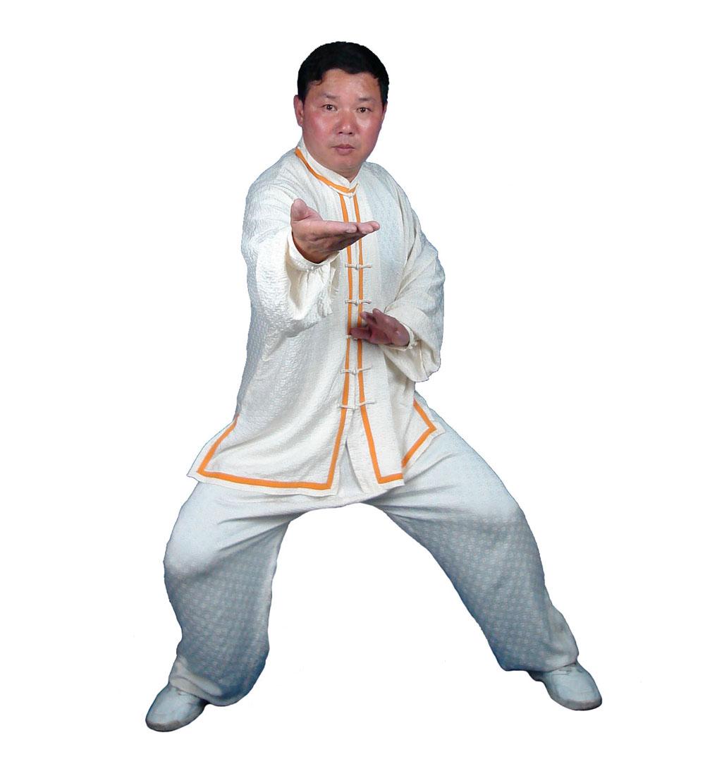 Wudang Taiji 108 Postures Class