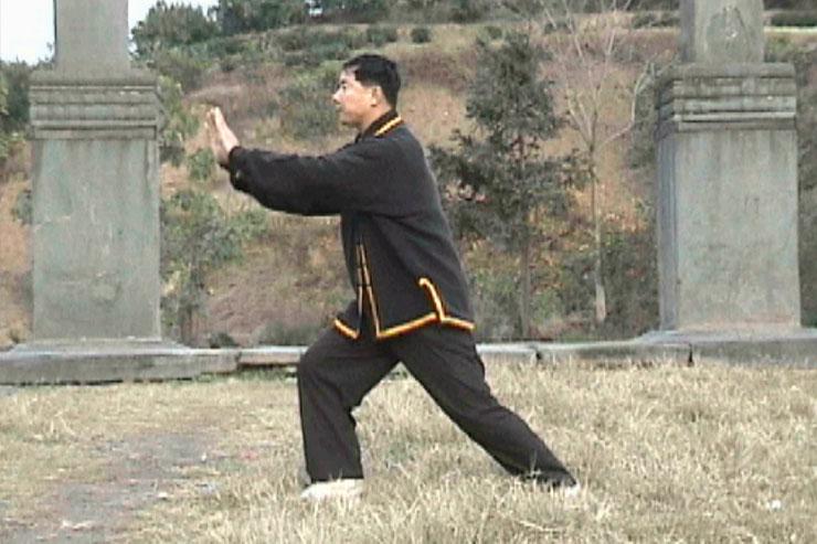 Prof. Liu At Wudangshan, Qigong Practice, 1999