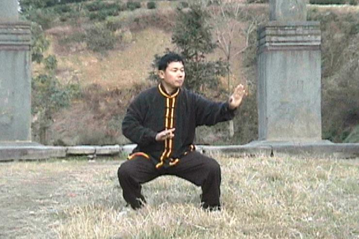 Prof. Liu At Wudangshan, Qigong Practice, 1999, Lu