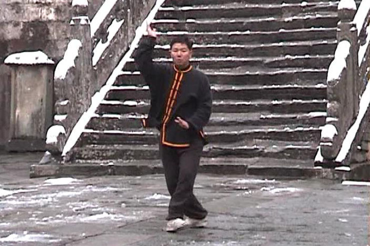 Prof. Liu At Purple Heaven Hall, December 1999, Taiyi