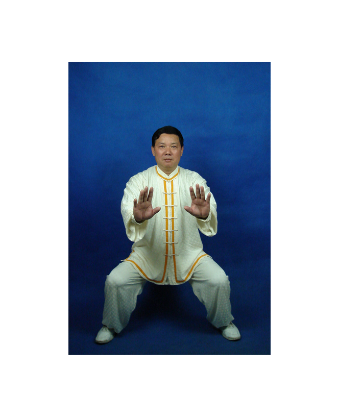 Qigong Register Tupin2