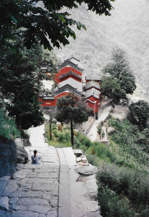 Terri Morgan, Going Down The Stairs from the temple at Tianzhu, Wudang Mountains 1995